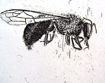 New Bee Etching