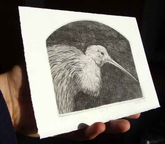 Small Kiwi Etching fine lines and detail