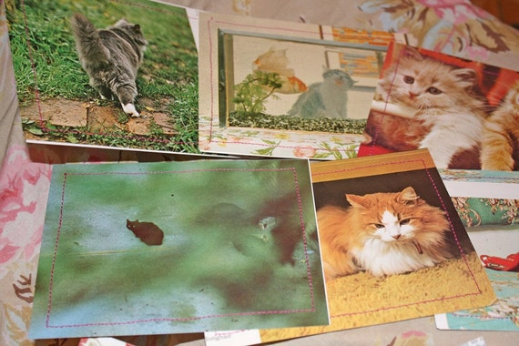Retro cat butt card set cute fluffy kittens 12 flat cards with envelopes