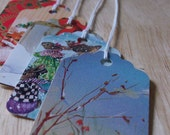 UPCYCLED Gift Tags for Christmas Gifts - SET OF 15 - handpunched from previous years' Christmas cards
