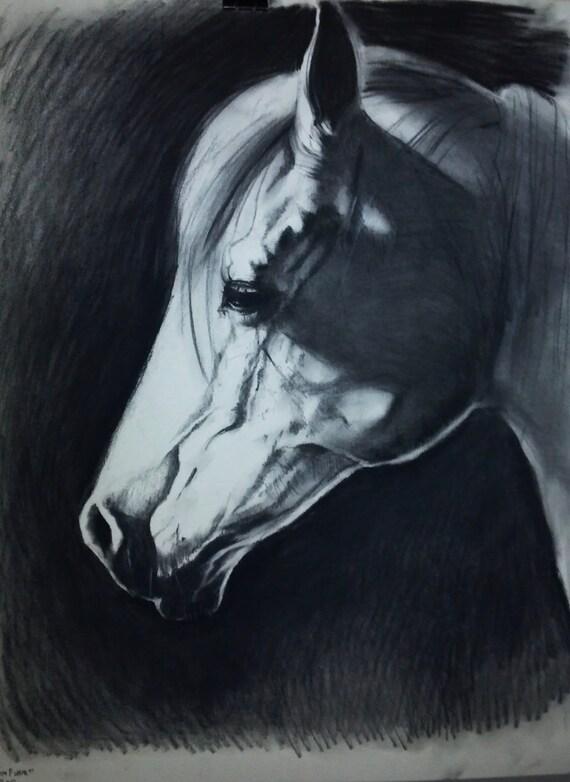 ORIGINAL Charcoal Drawing of a Horse