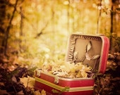 Vintage Red Suitcase, Fall Photography, Yellow Leaves, Landscape, Forest Photograph, Jewel tones, Thanksgiving, 8x8 - Sentimental Journey