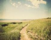 Beach Decor, Beach Photography, Landscape Photography, Coastal Decor, Ocean Art, Green, Blue, Wall Art, 8x8 - Summer, Please Return