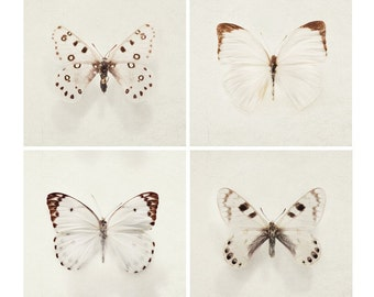 "SALE Four Butterfly Prints, Nature Photography, ""Wings"" Minimal Simple Nature Art Prints, Beige Brown, Spring, White Wall Art"