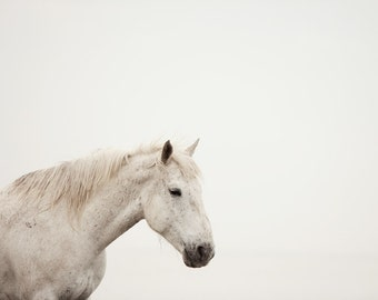 "White Horse Print, Minimalist Art, Nature Photography, Neutral Decor, Animal Photography, White Wall Decor ""White on White"""