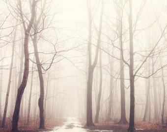 """Landscape Photography, Winter Trees, Enchanted Forest in Fog, Large Tree Art, Nature Wall Art, Winter Woodland """"The Bush of Ghosts"""""""
