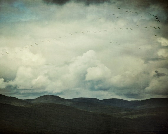 "Nature Photography, Landscape Print, Mountain Art Print, Birds in Flight,  Clouds, Blue Wall Art, Fine Art Print, ""Flight Path"""