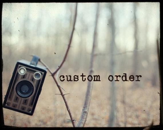 CUSTOM order for andeetx