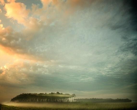 A Mist Story - 8x10 Fine Art Print