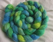 SPRING Blue Faced Leicester Spinning Fibre