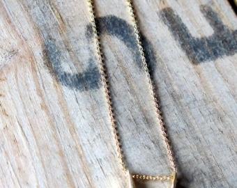 small gold horseshoe necklace.