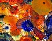 Bellagio flower art  8x10