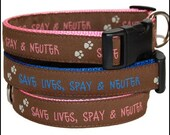 Spay and Neuter Ribbon Dog Collar  SUPPORT RESCUE