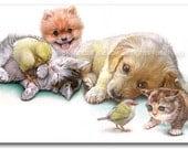 Golden Retriever Dog Pomeranian Puppy Kitten Chick Print