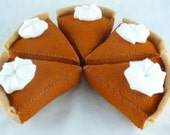 FREE SHIPPING WEEKEND Organic Catnip Pumpkin Pie Slice
