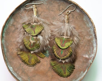small fluffy peacock feather earrings
