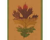 Oak Leaf ORIGINAL LIMITED EDITION ACEO