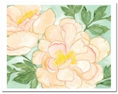 "Peony in Peach--8""X10"" Fine Art Print"