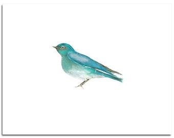 "Fine Art, Watercolor, Bird in Turquoise--8""X10"" Print by Laura Gunn"