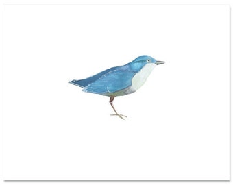 "Fine Art, Watercolor, Bird in Blue-8""X10"" Print by Laura Gunn"