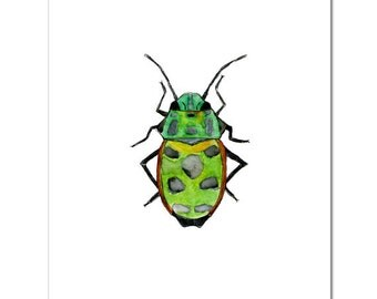 "Green Beetle-8""X10"" Fine Art Print"