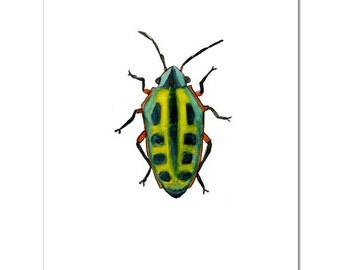 "Yellow and Green Beetle-8""X10"" Fine Art Print"