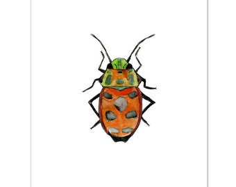 "Orange Beetle-8""X10"" Fine Art Print"