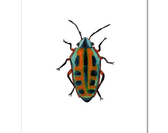 "Red Beetle-8""X10"" Fine Art Print"