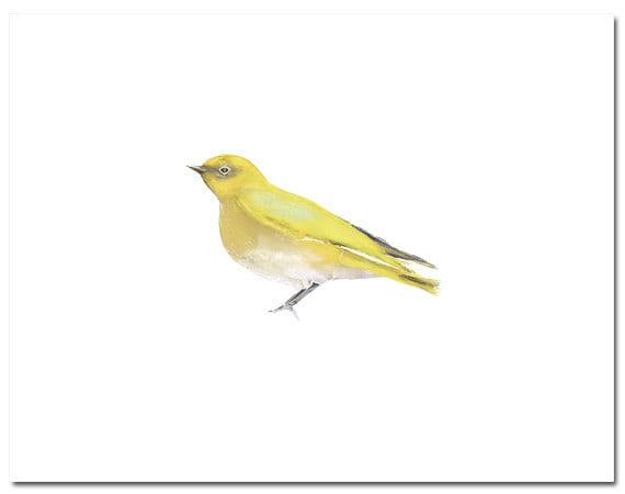 "Bird in Yellow--8""X10"" Fine Art Print"