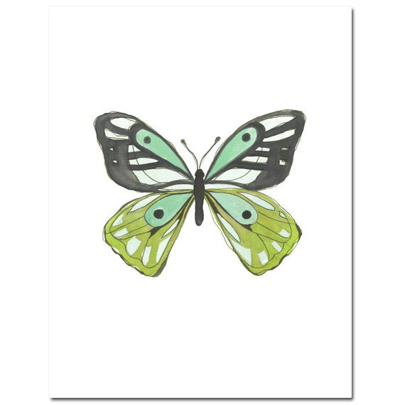 "Butterfly in Lime and Aqua--8""X10"" Fine Art Print"