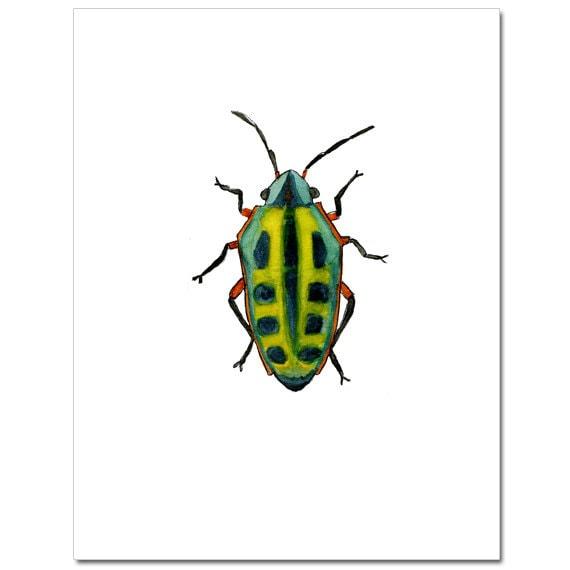 "Yellow and Green Beetle-8""X10"" Fine Art Print"
