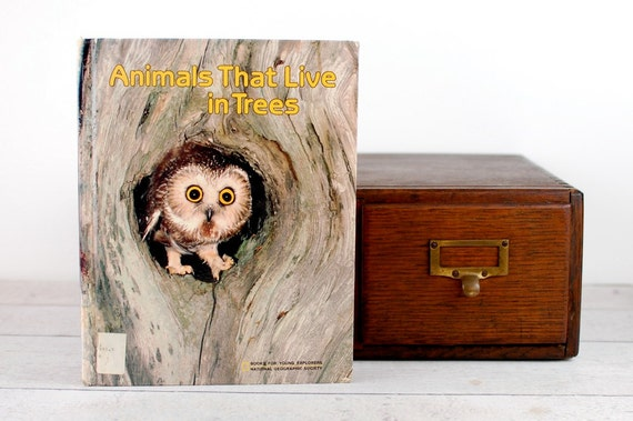 iPad Cover- Animals That Live in Trees- device case custom made from recycled book - custom made tablet cover