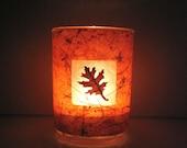 Autumn Oak Leaf Earth Light