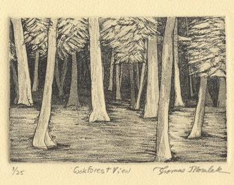 COOK FOREST VIEW original hand printed zinc plate etching
