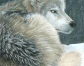 Wolf Art COLD EVENING Original Artwork by Carla Kurt