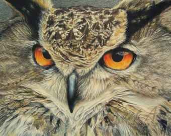 Owl Art print by Carla Kurt bird 11 x 14
