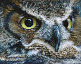 Owl Art print by Carla Kurt bird 11 x 14
