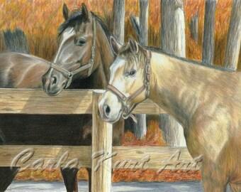 BUCKs PAL by Carla Kurt Equine Horse signed print