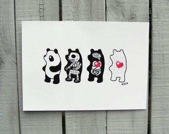 Panda Anatomy Giclée Art Print (LARGE)