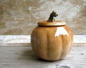 Pumpkin Jar Wheel Thrown Pottery