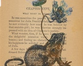 Specimen 6. Barn Mouse\/Frog\/Sea Flora on Charlotte Temple pages