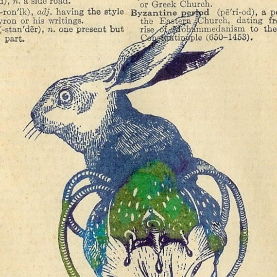 Specimen 10. Common Hare\/Narcomedusae on Websters Dictionary Pages