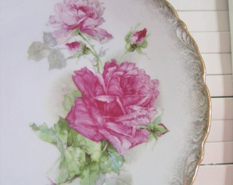 Antique Porcelain Plate, Wheelock Germany