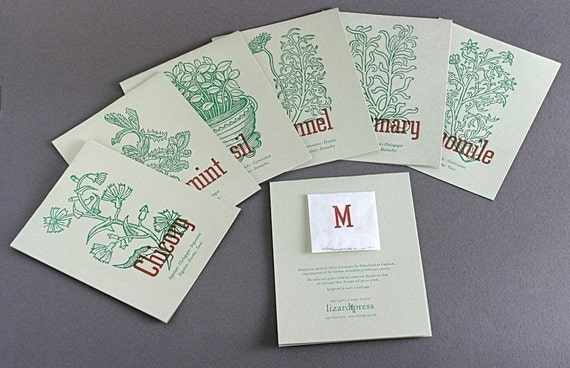 Notes to Grow On, Basil, Fennel, Marjoram, Rosemary, Peppermint, Chamomile, Chicory (letterpress card set of 7)