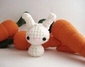 Soft White Baby Moon Bun - Amigurumi Bunny Rabbit