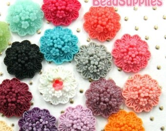 Waxflower Colorful Sampler, 20 pcs