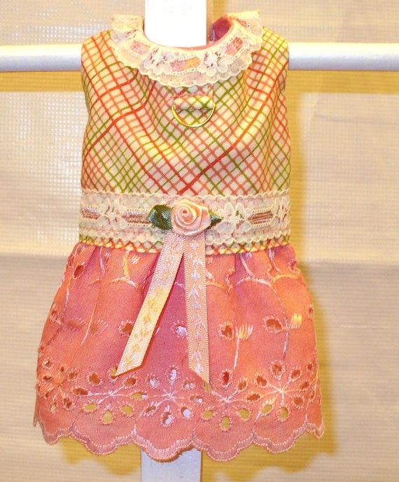 DOG HARNESS DRESS Peaches and Cream-Last One-Limited Sizes