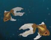 Deep Sea Goldfish 8.5x11 Print