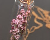 Just Me Best seller - Pink diamond flower in a glass bottle vintage brass chain necklace
