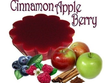 4 Cinnamon Apple Berry Tarts Potpourri Wickless Candle Melts Fruit and Spice Scent
